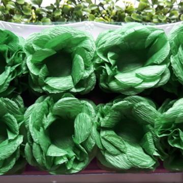 60 Forminha de Crepom Verde Musgo