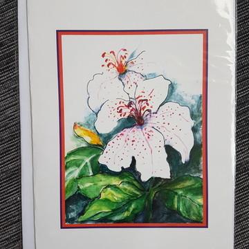 Cartão ELIZA ZAPPALÁ Lírio Branco
