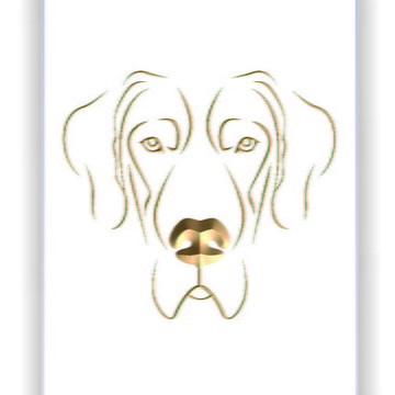Quadro - Dogue Alemão