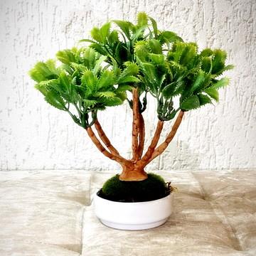 Bonsai Presente (artificial)