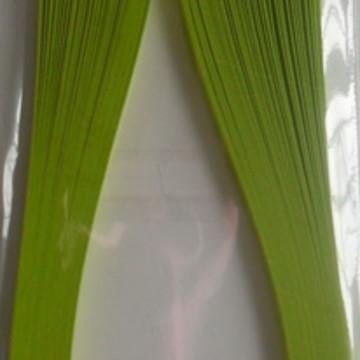 Lime Tonic 3mm