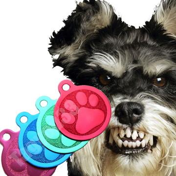 Placa Identificação cão patinha bola