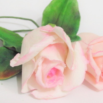 Rosa de açúcar
