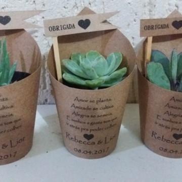 vaso de mini suculentas decorados