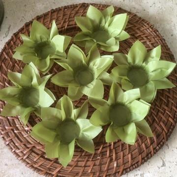 Forminhas de Lírio Verde Kiwi