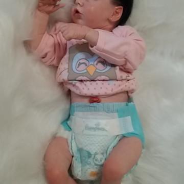 Bebe Reborn + Placa de barriguinha Twin