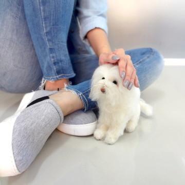 Maltês - Miniatura de cachorro