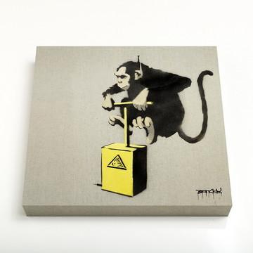 Quadro 16 Monkey Detonator