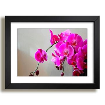 Quadro Flores Arranjo Beleza F36