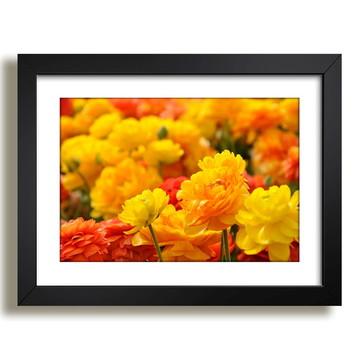 Quadro Flores Pétalas Paisagem F36
