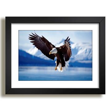 Quadro Aguia Animais Aves Decoração Sala Copa Quarto Varanda
