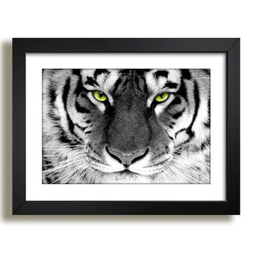 Quadro Tigre Animais Africa Decor F37