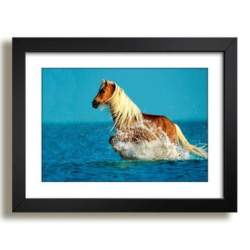 Quadro Cavalo Animais Africa Decor F37
