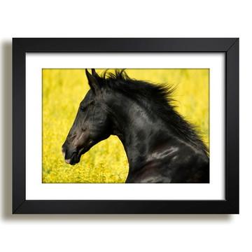 Quadro Cavalo Animal Africa Decor F37