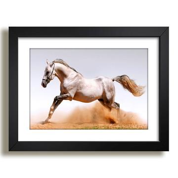 Quadro Cavalo Animais Africa Sala F37