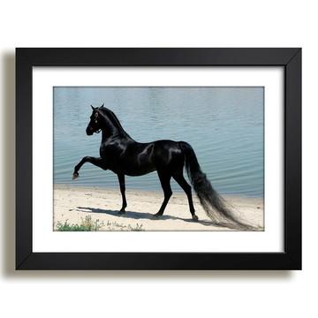 Quadro Cavalo Animal Floresta Decor F37