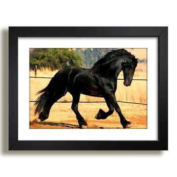 Quadro Cavalo Animais Paisagem N7 Decorativo Sala Paspatur