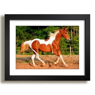 Quadro Cavalo Animais Paisagem Sala F37