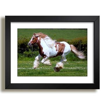 Quadro Cavalo Mundo Animal Sala F37