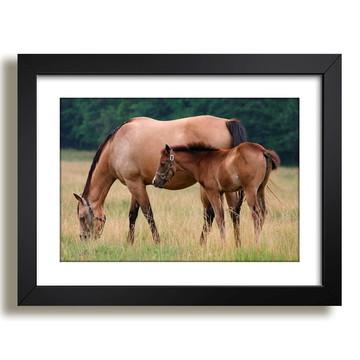 Quadro Cavalos Paisagem Africa Decor F37