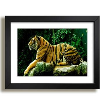 Quadro Tigre Mundo Animal Decorativo F37