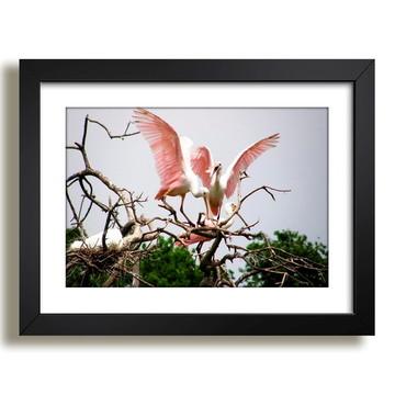 Quadro Aves Natureza Selvagem F37