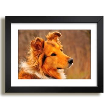 Quadro Cachorro Mundo Animal Sala F37