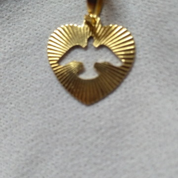 Medalha coração espírito santo.