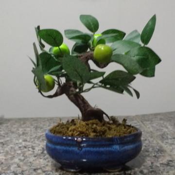 Bonsai Fruta V artificial