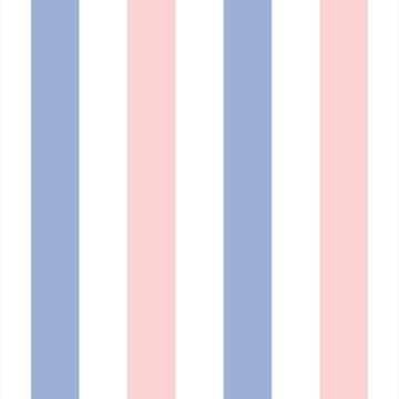 Papel de Parede Listras Azul E Rosa Leve