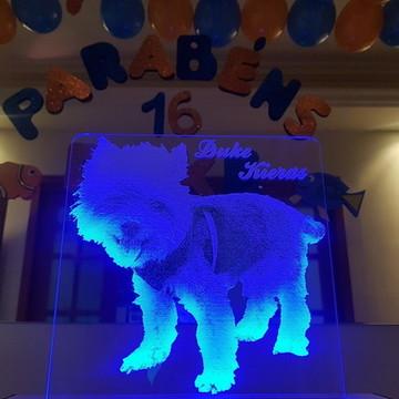 Promoção Luminária Yorkshire com Led Personalizado