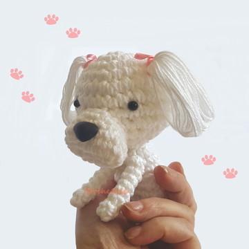 Cãozinho Maltês
