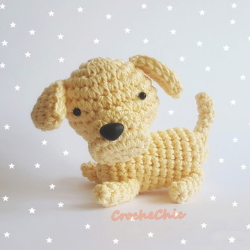 Cãozinho Golden