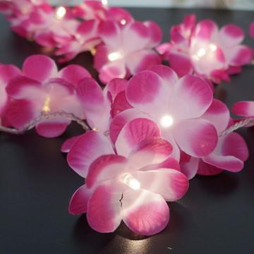 Luz De Fada Flor Pink e Rosa