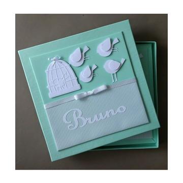 livro bebê menino passarinho verde scrapbook caixa