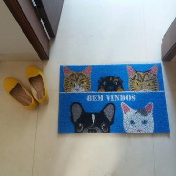 Bulldog + 3 Gatos + Porquinho da Índia - Bem-vindos