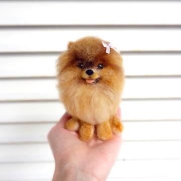Lulu da Pomerânia / Spitz Alemão - Miniatura de cachorro