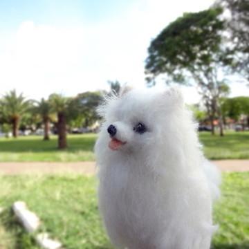 Lulu da Pomerânia - Miniatura de cachorro