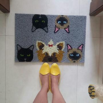 4 Gatos (pretos e siameses) + yorkshire