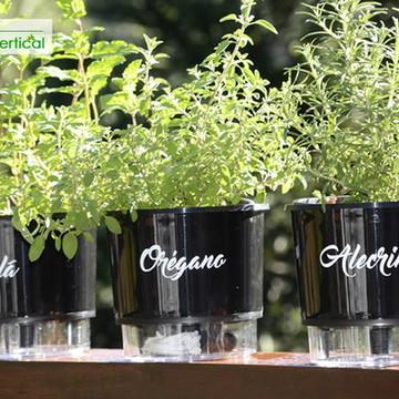 KIT 3- Vasos Auto irrigáveis Horta Jardim