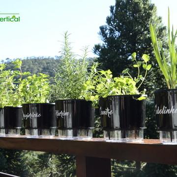KIT 6 - Vasos Auto irrigáveis Horta Jardim