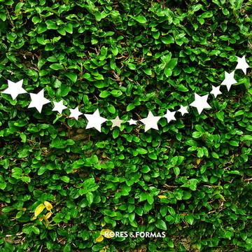 Varal de estrelas