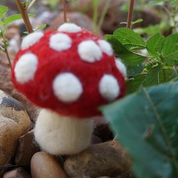 cogumelo feltrado
