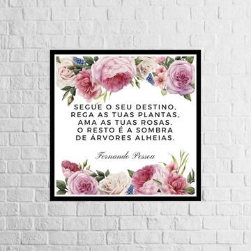 Poster Fernando Pessoa para imprimir