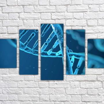 Quadro Decorativo Ciências DNA Biologia Com 5 peças 002