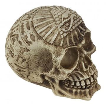 Cranio EGIPCIO em resina