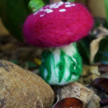 Cogumelo magenta