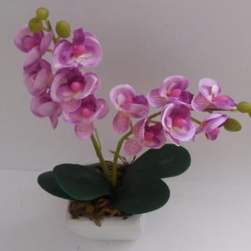 Mini orquídea delicada na cor lilas