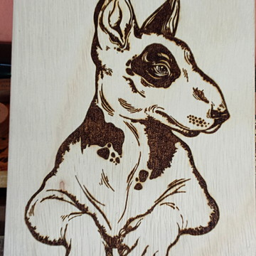 Quadro pirografado, bull terrier