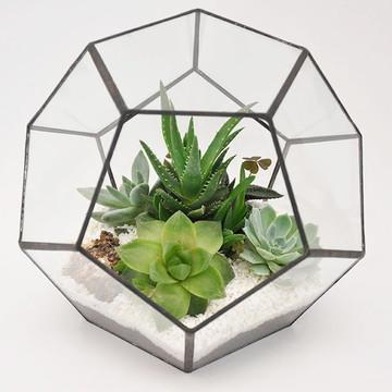 Vaso de Vidro Geométrico para Terrário